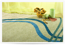 Bellingham Area Rug Cleaners
