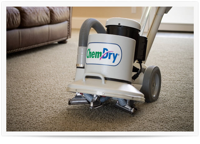 You Vs. The Professional Carpet Cleaner