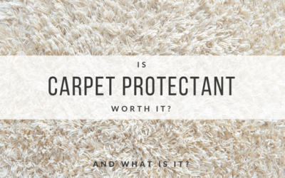 Is Carpet Protectant Worth It?
