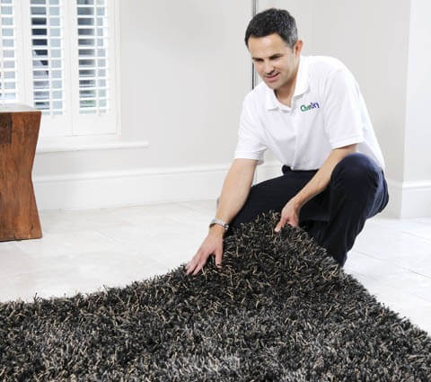 area rug cleaning bellingham wa