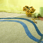 area rug cleaning whatcom county