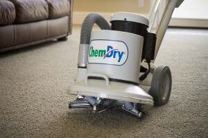 machine for carpet cleaning bellingham wa