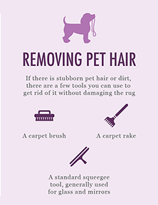 remove pet hair from rug